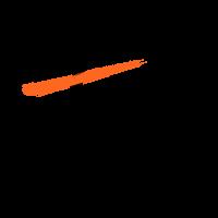 ASSOCIACIÓ PROFESSIONAL DE TEATRE PER A TOTS ELS PÚBLICS - TTP .